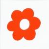 Orange_mini_302